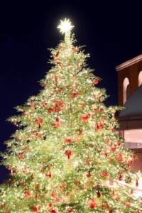 クリスマスツリーの日,いつ,どんな日